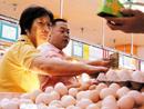 广州暂无鸡蛋检测计划