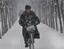 沈阳普降大雪