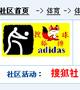排球,中国女排,女排国家队,郎平